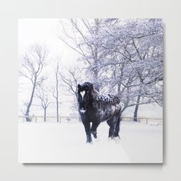 #Black #beauty #horse in a #Winter #landscape Metal Print