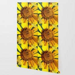 Horicon Marsh Sunflower Wallpaper