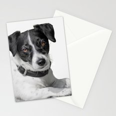 Kashi in B&W Stationery Cards