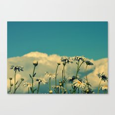 A Beautiful Little Fool Canvas Print