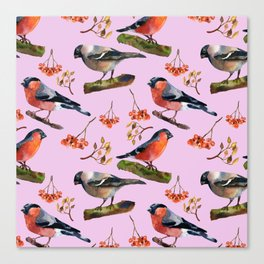 Bullfinches Canvas Print