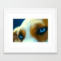 Zoeys eye's Framed Art Print