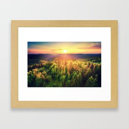 Sunset over forest Framed Art Print