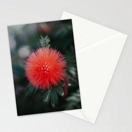 Horton Stationery Cards