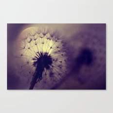 dandelions - dancing in the moonlight Canvas Print