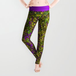 GOLDEN CHAIN TREE LABURNUM ALPINUM Leggings