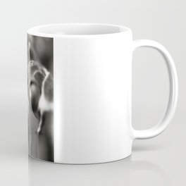 Flag Iris Seed Pod 1 Coffee Mug