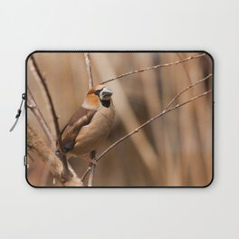 Hawfinch Laptop Sleeve