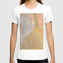Instrumental Shapes T-shirt