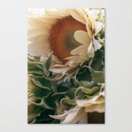 Market Flowers #4 Canvas Print
