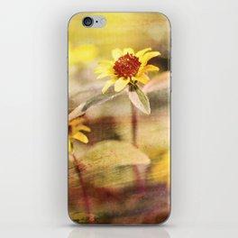dreamland iPhone Skin
