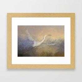 Snowy Egret - Taking Flight Framed Art Print