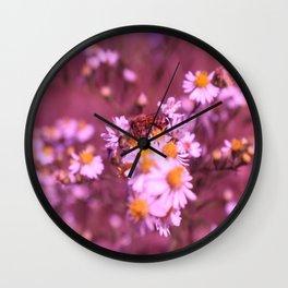 Tinted Wall Clock
