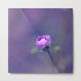 she blushed Metal Print