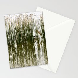 Pelican Hideout Stationery Cards