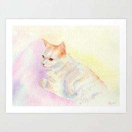 Playful Cat III Art Print