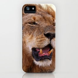 Lion - Africa wildlife iPhone Case