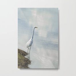 Great Egret on the Shore of a Reflected Sky Metal Print