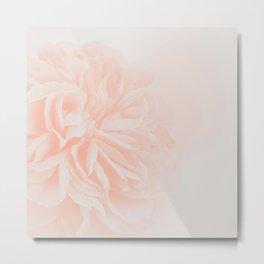 Light Peach Rose #3 #floral #art #society6 Metal Print