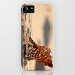 #Light and #Shadow #big #Shell and #starfish at the #beach iPhone Case