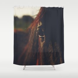Horse photography, high quality, nature landscape fine art print Shower Curtain