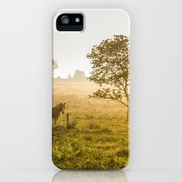 Two Horses at Sunrise iPhone Case