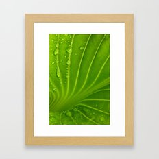 After The Rain # 9 Framed Art Print