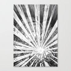Whiteout Canvas Print