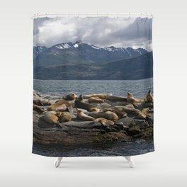 Sea Lions Shower Curtain