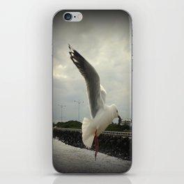 Flying Free iPhone Skin