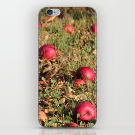 Resting Places iPhone Skin