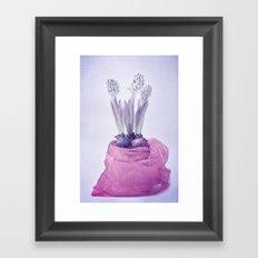 SPRINGTIME HYACINTH Framed Art Print