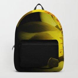 yelo Backpack