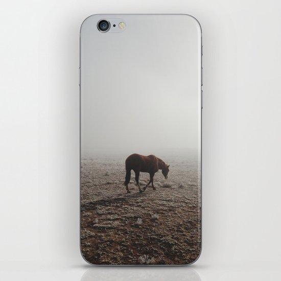 Fogged Horse iPhone & iPod Skin