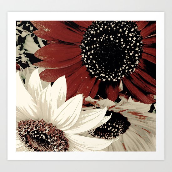 Frosted Sunflowers Art Print