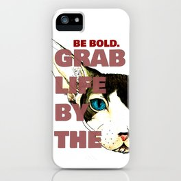 Grab Life by the Pussy iPhone Case