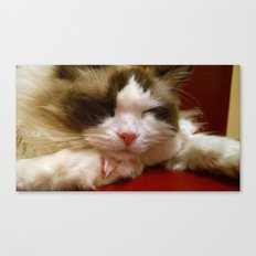 I am turning into a crazy cat lady Canvas Print