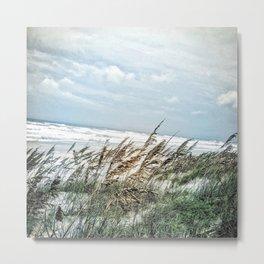 Florida Sand Dunes Metal Print