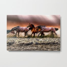 Wild Horses of the Outer Banks, North Carolina Landscape by Jeanpaul Ferro Metal Print