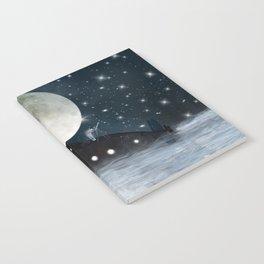 the astrologer Notebook