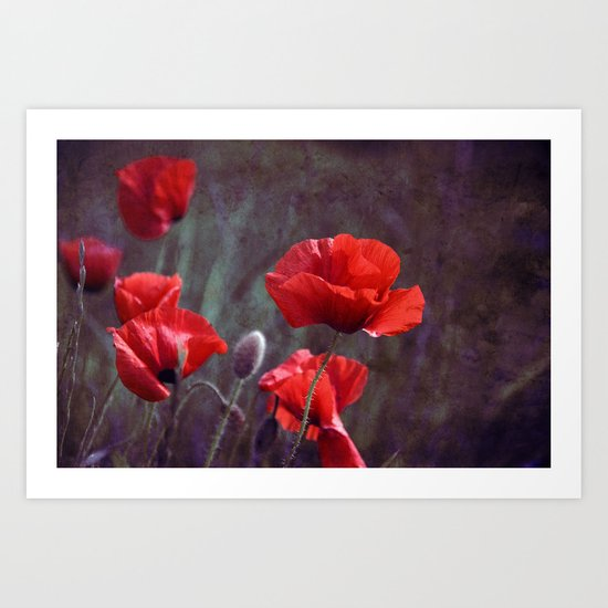 red poppyfield  Art Print