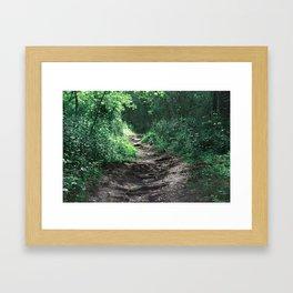 Woods III Framed Art Print