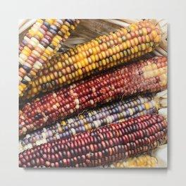 Native American ('Indian Corn') Autumn-Fall Harvest Celebration Metal Print