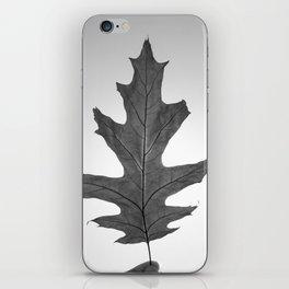Oak Leaf iPhone Skin