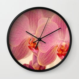 Triplet pink orchids  Wall Clock