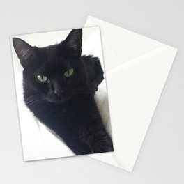 Phoebe the Cat Chilaxing Stationery Cards