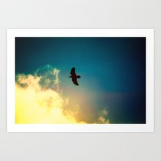 Raven Flight Art Print