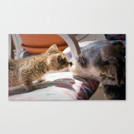 Friendship Is A Wet Nose Canvas Print