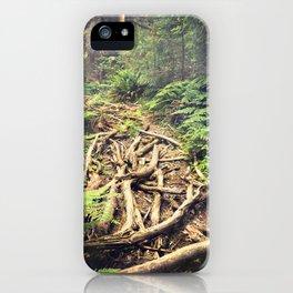 Misty Rainforest iPhone Case