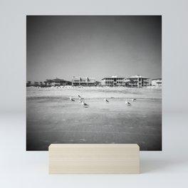 Birds on the Beach - Tybee Island, Georgia - Black and White Film Photograph Mini Art Print